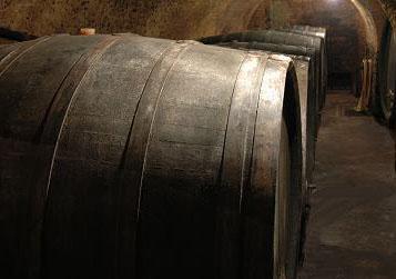 Weinbau Fabich